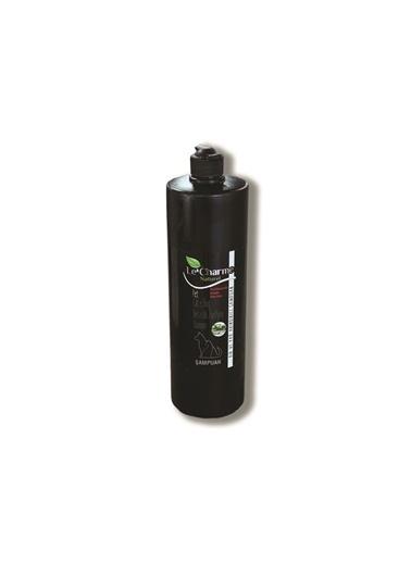 JBL Le Charme Yağ Ve Kir Arındırıcı Şampuan 1Lt Renkli